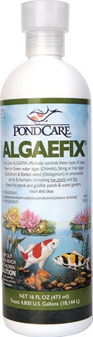 AlgaeFix  8oz